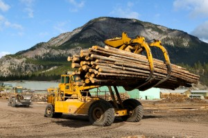 Mechanical Equipment for Logging