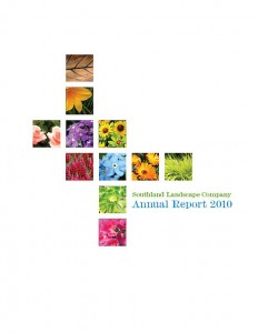 Colorful Report Cover