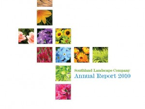 colorful-report-cover