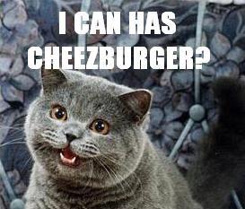 Worst Fonts Example - Impact (I Can Has Cheezburger Meme)