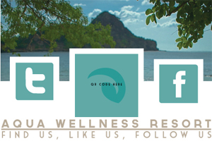 Latest Print Design Trends - Aqua Wellness Resort Social Icons