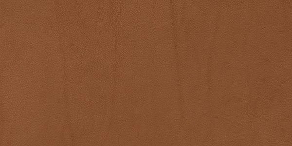 Walnut Leather Background