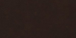 Burlington Brown Leather Background