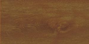 Oak 2 Background