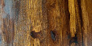 Polished Hardwood Background