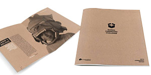 Global Cardboard Challenge Brochure