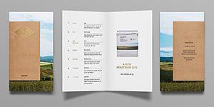 Valentto Brochure