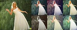 Wedding Theme Action