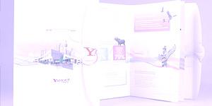 Yahoo! Brochure