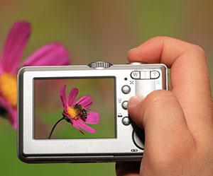 Digital Camera taking JPEG Photo