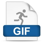 GIF File Format