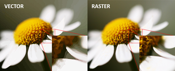 Vector vs. raster images