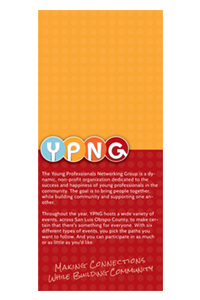 Young Professionals Networking Group