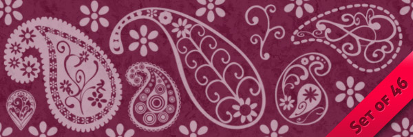 CU Funky Paisley Brushes
