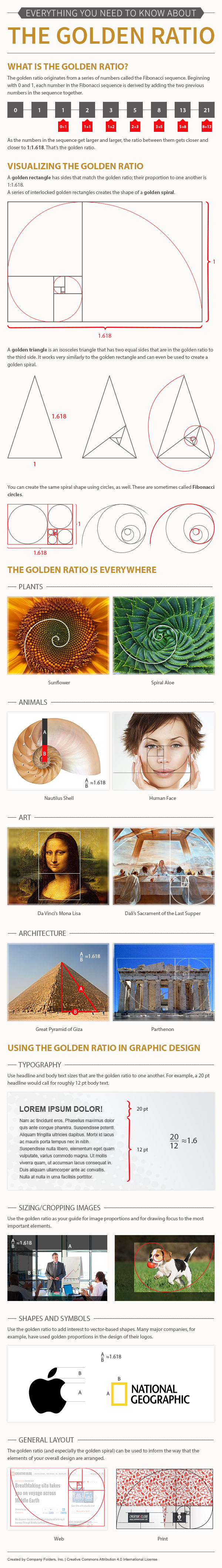Poster design golden ratio - Everything You Need To Know About The Golden Ratio