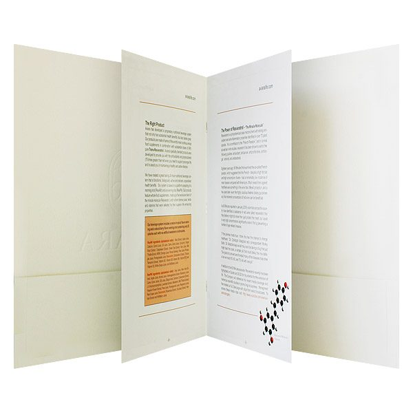 Aviara Life Brochure Folder Design (Open Brochure View)