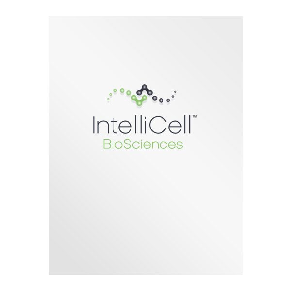 IntelliCell BioSciences Medical Pocket Folder (Front View)