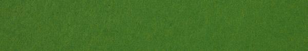 Leaf Green Vellum, 80 lb.