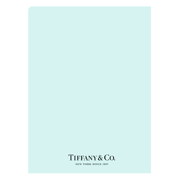 Tiffany & Co. (Back View)
