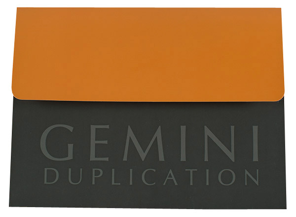 Gemini Duplication (Front View)