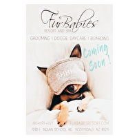 Custom Postcards for Fur Babies Resort and Spa